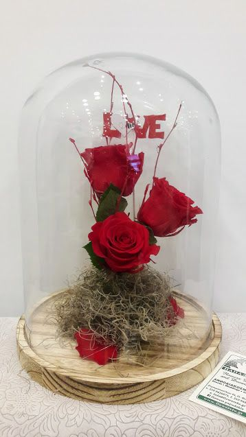 http://flowers4u.gr/product/beauty-beast-enchanted-rose-glass-triantafilla-gia-panta/ Beauty and the Beast Enchanted Rose in Glass  Preserved roses -forever roses in glass 30cm h  Τριαντάφυλλα για πάντα!!!