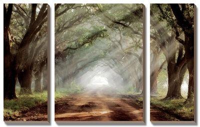 Evergreen Plantation Canvas Art Set by Mike Jones at Art.com