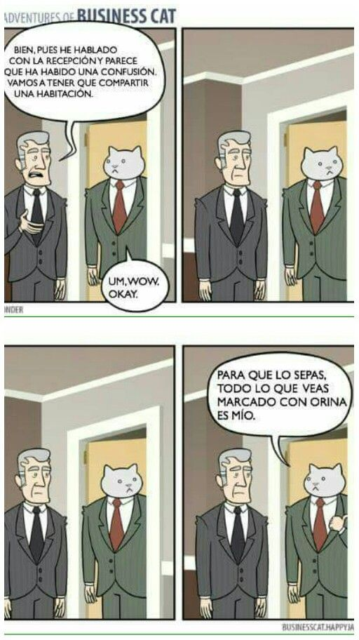 The Adventures of Business Cat #12 #gatos