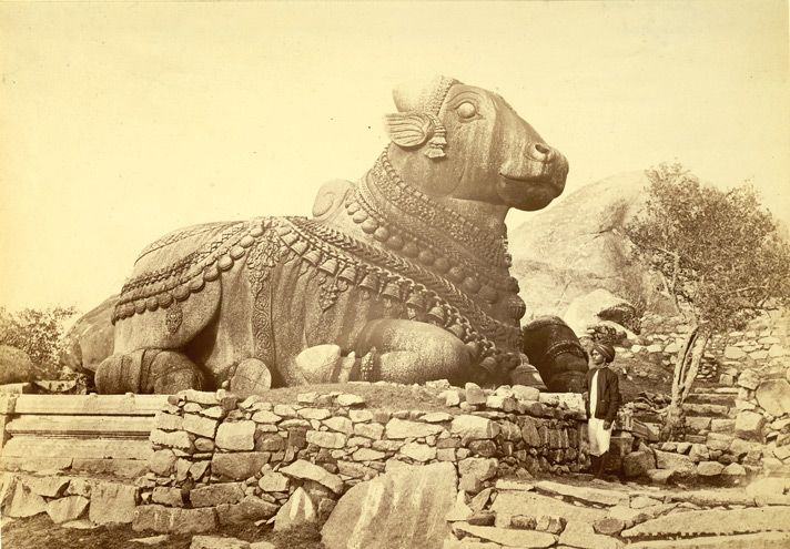 Nandibull - Sacred bull - Wikipedia, the free encyclopedia