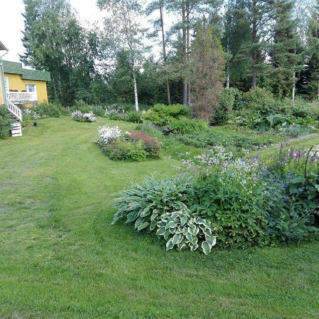 God morgon💚🐕❤ Oj, så trötta vi kan vara😆Ha en fin torsdag🌼💚💛 #trädgård #tröttbella #hemmaigränlandet