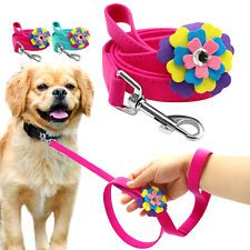 Big Flower Decorate Studded Pet Dog Walking Leash Blue Pink for Small Medium Dog