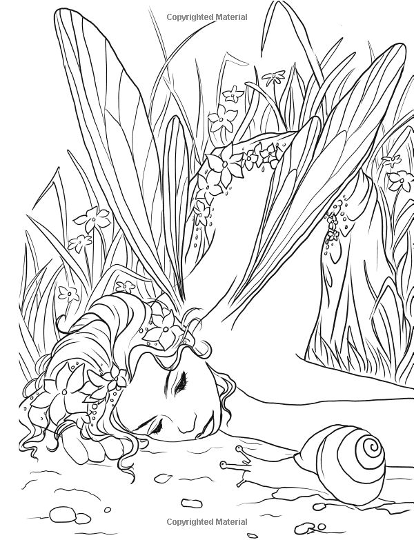 fairy adult coloring page source amazoncom