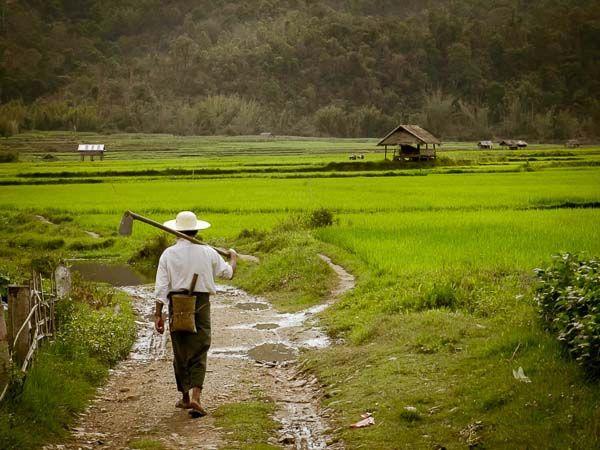 Farmer Walking Bus Travel In Myanmar. The Shocking Truth About Bus Travel In Myanmar – But It's Worth It!