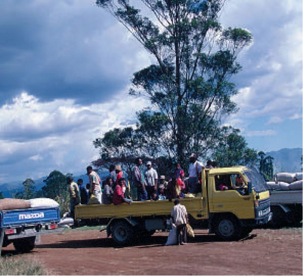 Destination PNG, Circa 1995. Business Potential: Ministry of Transport