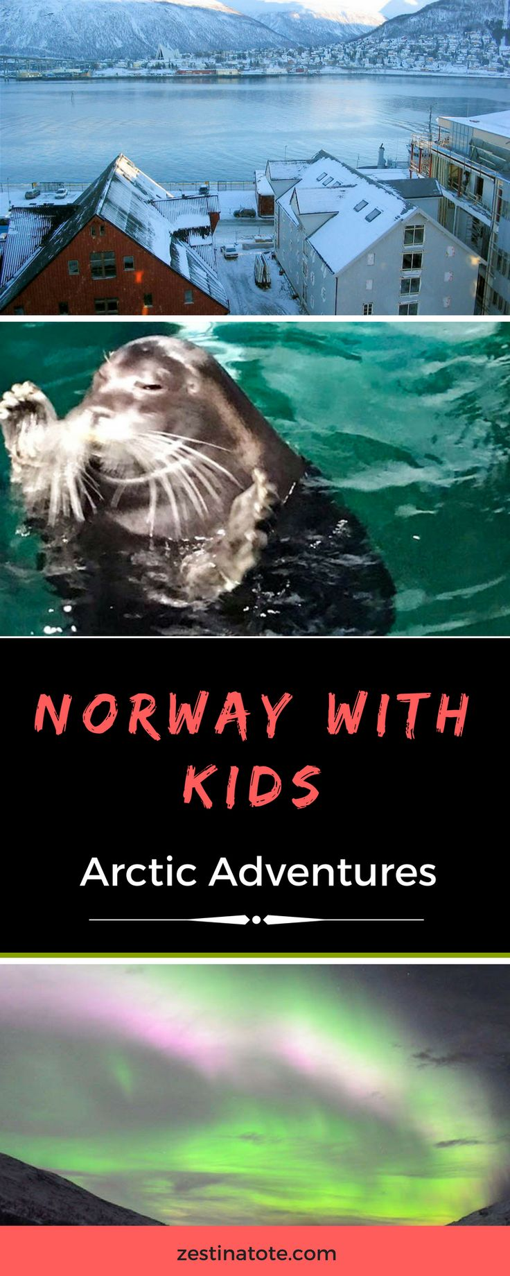 Norway is a dream #winter destination. See the Northern Lights, go for a husky dog sled ride, visit Polar Park, go whale watching. And take your kids with you! #norway #tromso #northernlights #visitnorway #norwaywintertrip #arcticadventures #huskysled #auroraborealis #polarpark #aquarium