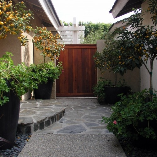 Front Entrance Garden Design Ideas: Love The Wood Tone Next To The Grey/concrete