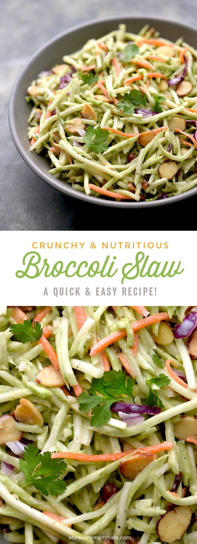 recipe: broccoli slaw salad paleo [14]