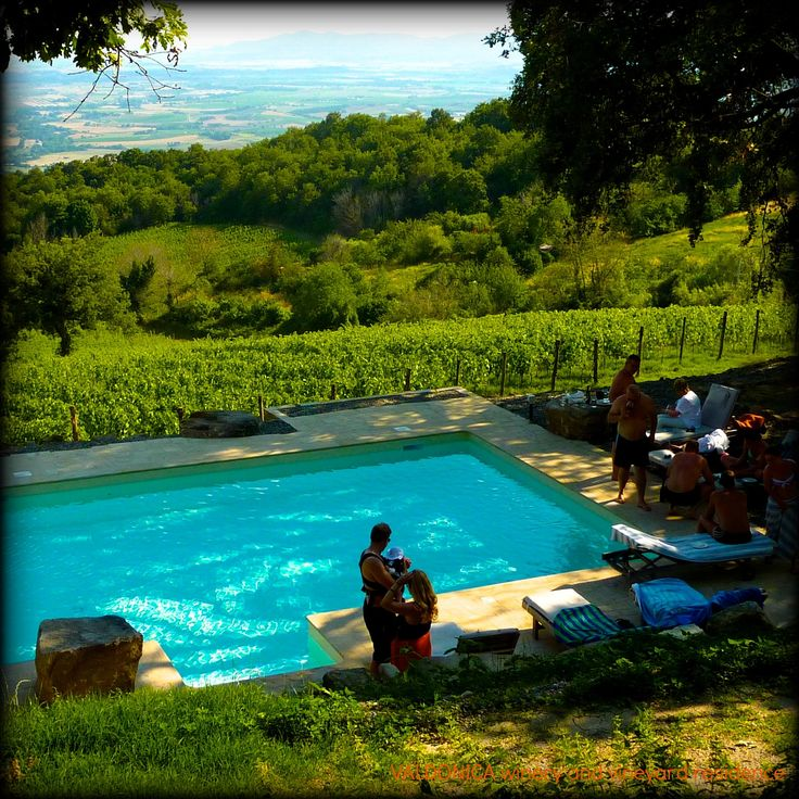 Enchanting and relaxing ‪#‎swimmingpool‬ sourrounded by the green of the ‪#‎vineyard‬ in VALDONICA.