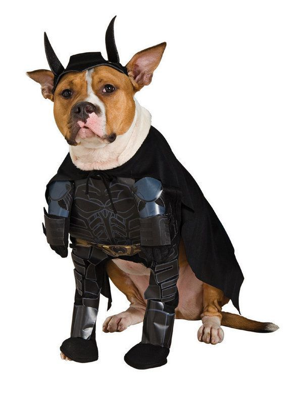 The Dark Knight Rises Dog Costume Pet Halloween Costumes Batman