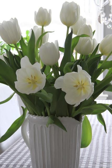 White Tulips in Ceramic Pitcher-Brighten Winter Days