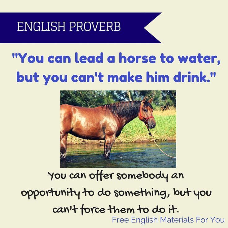#ENGLISH P#ROVERB 31-08