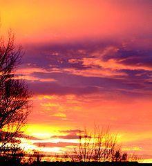 Maienfelser Naturkosmetik - Probe Morgenrot Körperöl - Frisch, frei und fröhlich wie der Morgenwind vermittelt der Duft dieses Körperöls durch seinen anregenden Charakter. Auf in den Tag! Umhüllt von ausgesuchten Kräuteressenzen in klarer Frische und belebendem Aroma