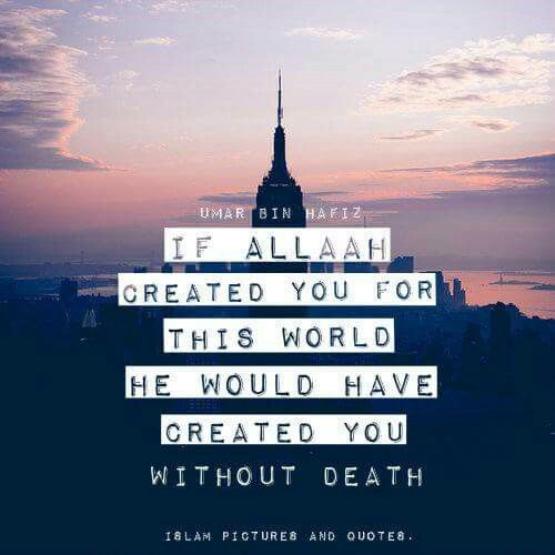 Wow, how true! Had Allah created us for this world, HE wouldn't allow us to die. This world was created as a test for us and in the end, we will be shown our results.