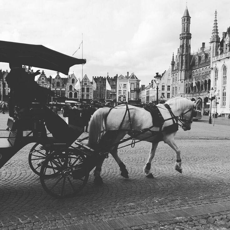 #Brugge #Belgium  Raccoon Pedro is traveling. #souvenirhunting #souvenirs