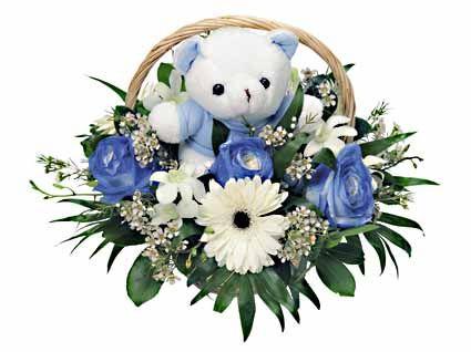 λουλούδια για μαιευτήρια,Λουλούδια για Γέννηση, ανθοδεσμες για γεννηση,αποστολη λουλουδιων Αυθημερόν,λουλουδια για νεογεννητο, τι λουλουδια πανε σε γεννα,λουλουδια για γεννηση αθηνα,γλαστρα για γεννηση,συνθεση λουλουδιων για γεννηση, λουλουδια για μαιευτηριο,συνθεσεις για νεογεννητα,μπαλονια για γεννηση,τι λουλουδια πανε σε γεννα,συνθεσεις λουλουδιων για γεννηση, λουλουδια για μαιευτηριο,γλαστρα για γεννηση,λουλουδια για γεννητουρια,λουλουδια για νεογεννητο,τι λουλουδια πανε σε γεννα,συνθεση…