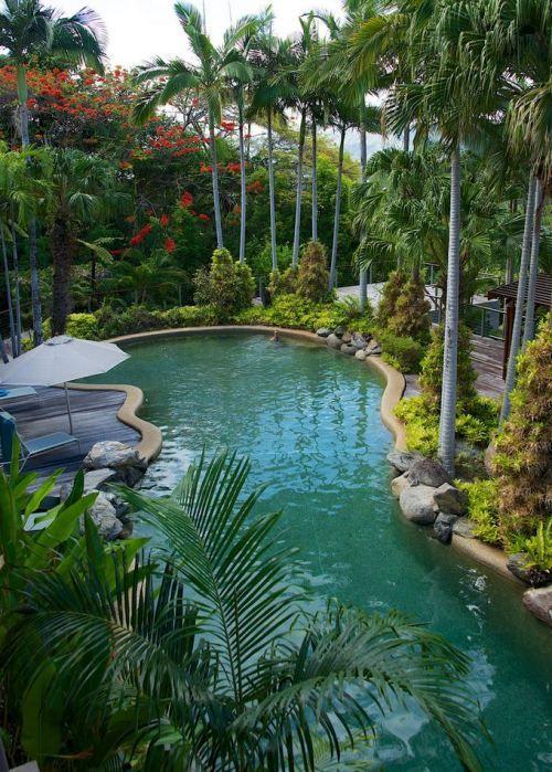 Tropical Queensland, Port Douglas / Australia (by ...