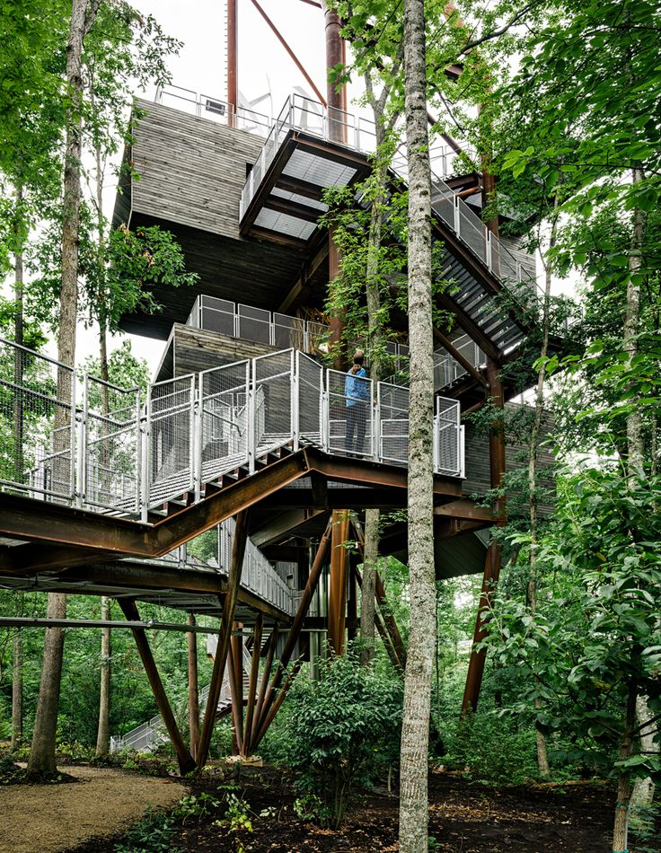 Weekend Cabin The Boy Scouts Built A Treehouse The