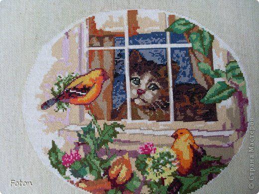Картина панно рисунок Вышивка крестом Кошки очарование мое   или Кошачий след в моей работе Канва Нитки фото 10