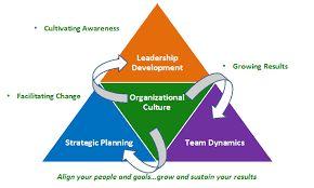 S³- Sustainable Strategies Segment: Strategic Alignment and Sustainability