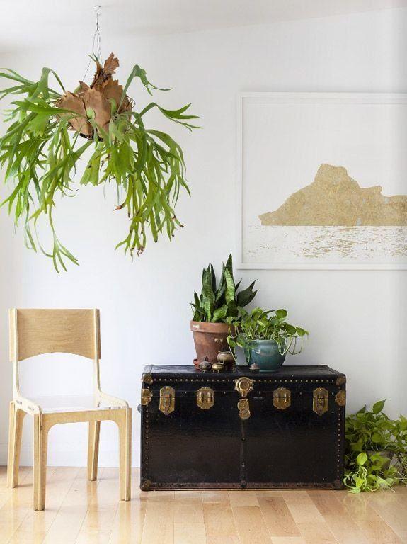 mejores 18 imágenes de menjador / sala d'estar en pinterest