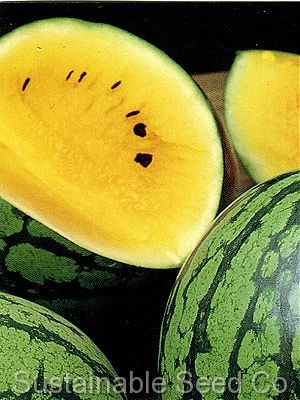 Petite Yellow Watermelon - Green Bay #Packers colors!