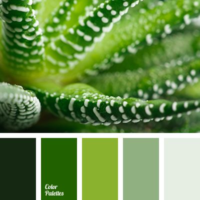 Best Color Inspiration Images On Pinterest Color Schemes - Colors that match green