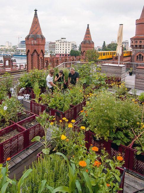 ღღ Privater Gemeinschaftsgarten über den Dächern von Berlin - A privately owned community rooftop garden