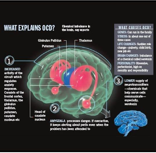 1 in 50 have Obsessive Compulsive Disorder (OCD) - a history & description of symptoms https://www.nimh.nih.gov/health/topics/obsessive-compulsive-disorder-ocd/index.shtml https://psychcentral.com/disorders/ocd/what-causes-obsessive-compulsive-disorder-ocd/?all=1 http://www.mayoclinic.org/diseases-conditions/obsessive-compulsive-disorder/symptoms-causes/dxc-20245951
