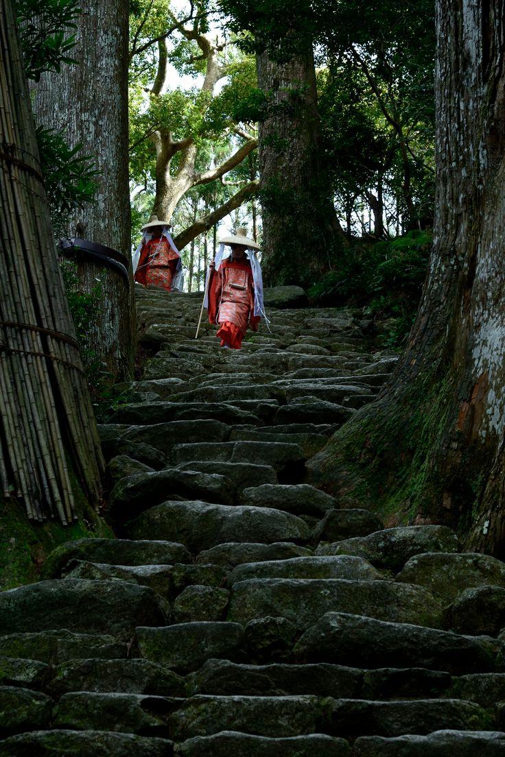 #snapshots #shrine #midori