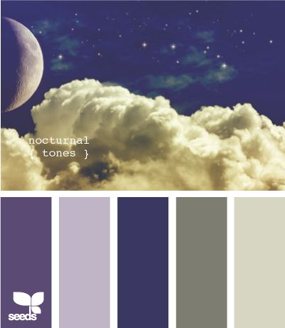 nocturnal tones - thinking these colors would be great for a bedroom. Like the dark gray for an upholstered headboard, maybe an accent wall in the first color with the rest of the room in the second color? Yes... ?