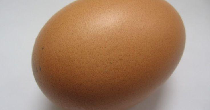 """Cómo proteger un huevo de una caída. Casi todo el mundo tiene que completar la prueba de """"caída de huevos"""" en la escuela o el trabajo. Esta actividad es más como un concurso, los participantes deben crear una cubierta de protección para el huevo, luego colocar el huevo y la cubierta en un punto alto. El huevo que no se rompe es el ganador. Arribar a una idea para una barrera de ..."""