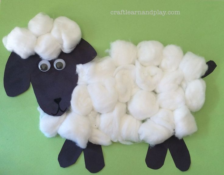 Cotton ball craft - sheep. We love simple animal crafts as they are great opportunity to learn. While we work we talk about animal that we are working on, their colours, about sounds they make, what do they eat, where do they live and so on.