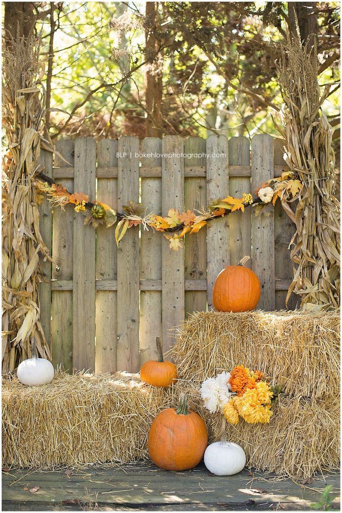 Harvest Mini Sessions Galloway, New Jersey, Bokeh Love Photography, Fall, Pumpkins, Hay, September, October, November