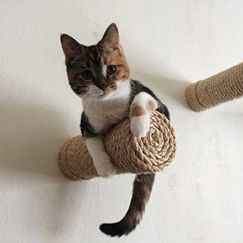 Your cats will reach new and exciting heights as they hop and dangle from these cool sisal rope-wrapped Floating Cat Shelves. Each shelf is bracketless & easily mountable -- just screw the post into a stud & soon your cats be showcasing their playful curiosity & gravity-defying feats of calculated grace ...