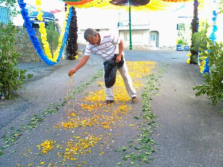 ...Colocação do tapete de flores...na Rua da Tapada Nova...