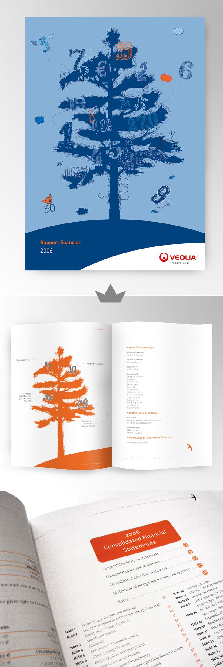 VEOLIA - Rapport annuel 2006  (Rapport financier)