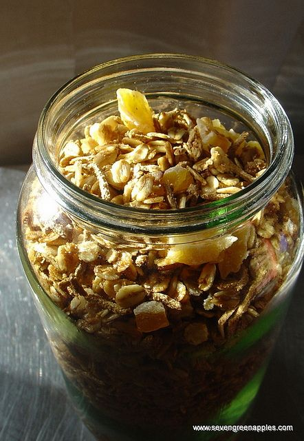 Toasted Muesli with Apple Syrup & Dried Apple Chunks