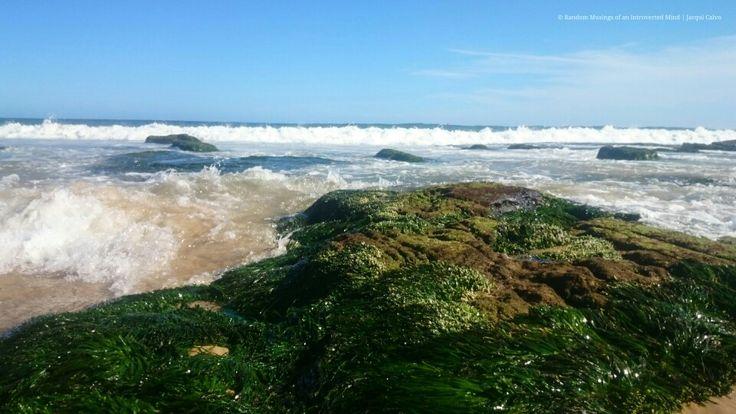 Rolling waves #newcastlebeach