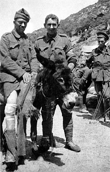 John Simpson with his Donkey, 1915: Simpson was a stretcher bearer with the ANZACs during the Gallipoli Campaign in World War I. After landing at Anzac Cove on 25 April 1915, he obtained a donkey and began carrying wounded British Empire soldiers from the frontline to the beach, for evacuation. He continued this work for 3 and a half weeks, often under fire, until he was killed.