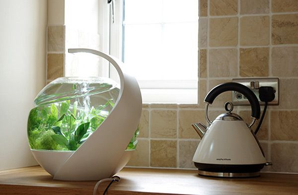 http://www.yankodesign.com/2014/10/17/the-best-fish-tank-ever-period/
