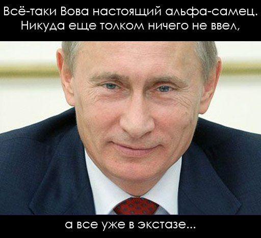 Alpha male Putin