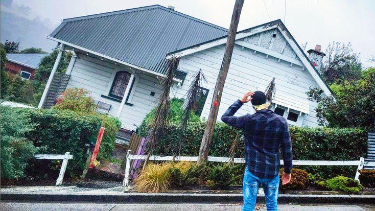 The quiet New Zealand street that's a big Instagram hit