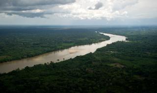 Colombie. Les Farc critiqués pour les 700000 litres de pétrole déversés dans la nature | Courrier international