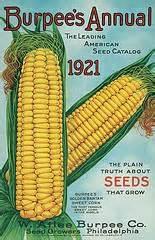 vintage burpee seed catalog 1921
