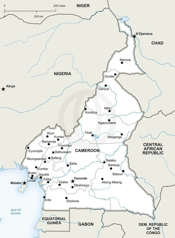 61 best maps of africa continent regions countries images on cameroon political map download political vector maps royalty free high resolution jpeg and vector format gumiabroncs Images
