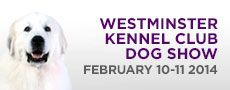 MONDAY & TUESDAY, FEBRUARY 10-11, 2014 8AM-6PM   •Monday to include hound, toy, non-sporting and herding groups •Tuesday to include sporting, working and terrier groups