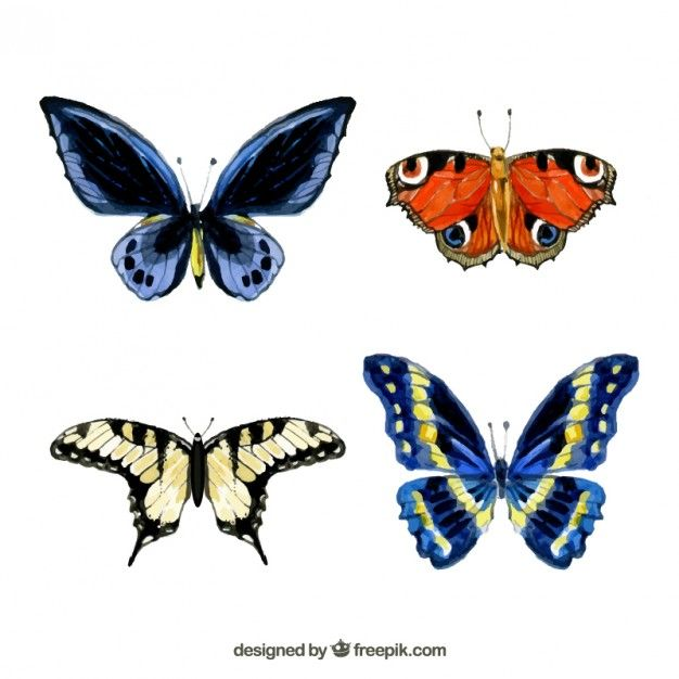 Free vector Hand painted butterflies #2232