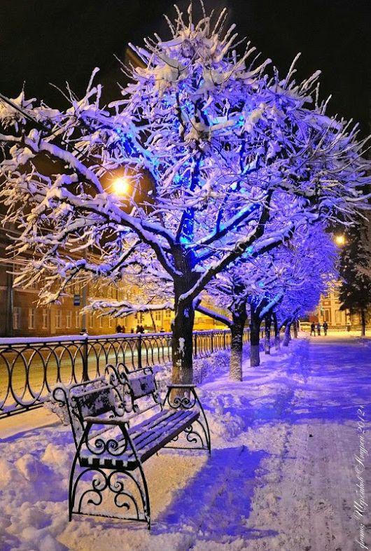 winterscape.