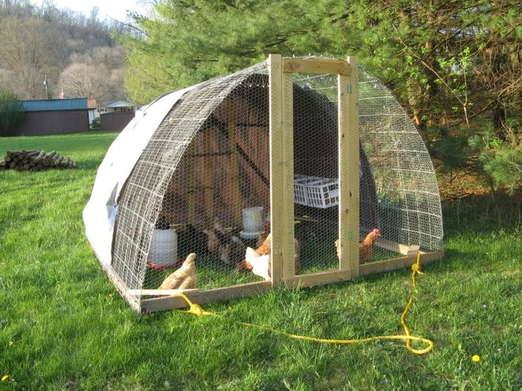 A light hoop house that you can carry to give fresh grass to you chickens.